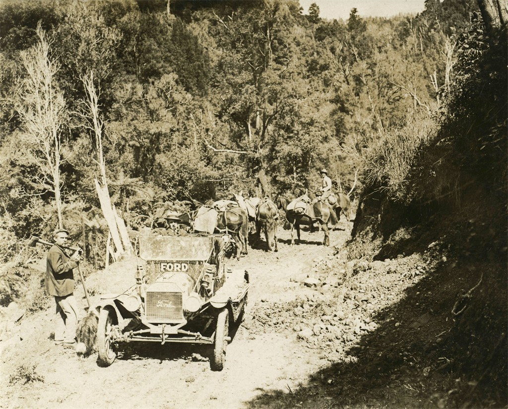 p62 transport in Waitewhena .JPG